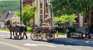 Carriage Ride in Clifton Forge, Virginia, USA. Clifton Forge, VA – June 3rd: Festival visitors enjoy a carriage ride at the annual Alleghany Highlands stock images
