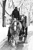 Carriage Ride in winter Stock Images