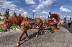 Carriage rides Kazan Kremlin. Stock Photos