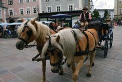 Carriage rides. In Salzburg,Austria Royalty Free Stock Image