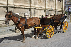 Carriage in Seville Stock Photos