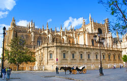 The carriage. SEVILLE, SPAIN - MAY 3, 2013: The carriage with the horse waits for the tourists near Seville Cathedral, on May 3 in Seville Stock Photos