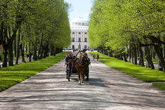 Carriage.Triple lime alley.Pavlovsk.Spring Royalty Free Stock Images
