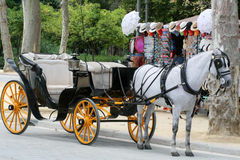 The carriage. A carriage on the street Royalty Free Stock Photos