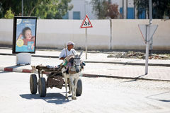 The carriage on the streets of Kairouan Stock Image