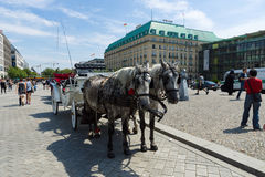 The carriage for tourists walking through the city on Pariser Platz Royalty Free Stock Photography