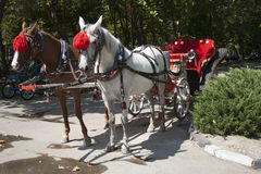 Carriage Stock Images