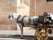 Carriage waiting for passengers in Malaga, in front of Malaga´s Cathedral, Andalusia, Spain Royalty Free Stock Photo
