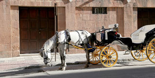 Carriage waiting for passengers in Malaga, southern Spain Royalty Free Stock Photo