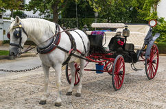 Carriage is waiting for you Stock Image