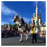 Carriage at Walt Disney World parade party. Horse carriage and maid in front of Cinderella Castle at Christmas holiday parade party,Walt Disney World Magic Royalty Free Stock Images