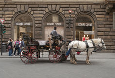 Carriage with white horses in the front of Roberto Cavalli store. In Florence ,Italy. Coachman in a carriage is a kind of tourist guide whos drive you in the Royalty Free Stock Photos
