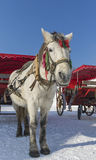 Carriage Winter Moon Lake Playground in Changchun in northeast China Royalty Free Stock Photos