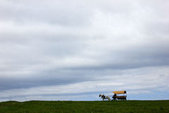 Carriage With A Horse Royalty Free Stock Images