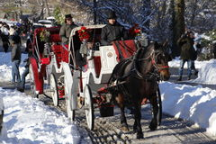 Carriages in Central Park Stock Photos