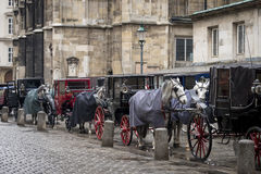 Carriages in the city Royalty Free Stock Photos