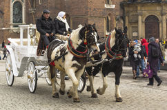Carriages in krakow royalty free stock photo