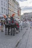 Carriages in krakow Stock Photography