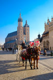 Carriages for riding tourists on the background of Mariacki cathedral Royalty Free Stock Images