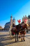 Carriages for riding tourists on the background of Mariacki cathedral Royalty Free Stock Photos