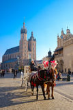 Carriages for riding tourists on the background of Mariacki cathedral Stock Photos