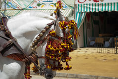 Carriages at the Seville's April Fair Royalty Free Stock Photography