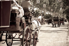 Carriages at the Seville's April Fair Royalty Free Stock Images
