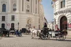 Carriages on the streets of Vienna city. Pedestrian street and architecture of Vienna city, Austria with carriages around, on a sunny spring day Royalty Free Stock Image