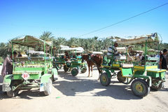 Carriages in Tunisia Royalty Free Stock Photos