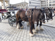 Carriages at Unter den Linden avenue, Berlin Stock Photography