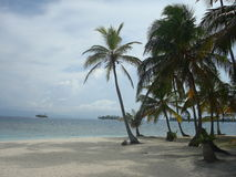 Carribean beach royalty free stock photos