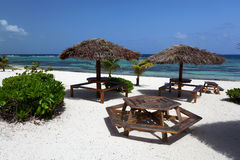 Carribean Palm tree with tables. In beach bar on Grand Caymand Island Royalty Free Stock Photography