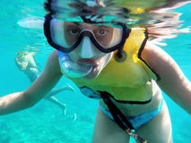 Carribean snorkeler. A snorkeler enjoys the clear carribean waters off the coast of isla mujeres, mexico Royalty Free Stock Photo