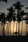 carribean solnedgång arkivfoton