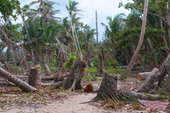 Carribean storm Royalty Free Stock Image