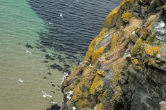 Carrick a Rede Island. Carrick-a-Rede is an island in Northern Ireland off the coast of County Antrim between Ballycastle and Ballintoy. The island is connected stock image