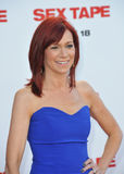 Carrie Preston Royalty Free Stock Photography