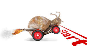 Carrier start. Speedy snail like car racer. Concept of speed and success. Wheels are blur because of moving. Isolated on white background Royalty Free Stock Images