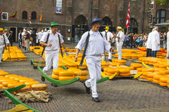 Carriers walking with cheeses in the Dutch cheese market Stock Image