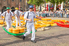 Carriers walking with many cheeses in the famous Alkmaar market Royalty Free Stock Photography