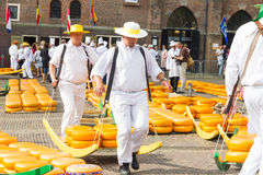 Carriers walking with many cheeses in the famous Dutch cheese market in Alkmaar Stock Photography