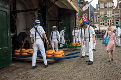 Carriers walking with many cheeses in the famous Dutch cheese market in Alkmaar, Stock Photo