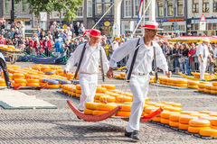Carriers walking with many cheeses in the famous Dutch cheese market in Alkmaar Stock Images