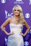 carrieunderwood Royaltyfri Fotografi