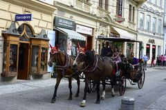 Carrigae con i cavalli nello streast Karlovy Vary Fotografie Stock