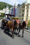 Carrigae mit roten Kappenpferden in Karlovy Vary stockfoto