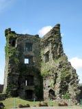 Carriganass-Schloss Lizenzfreie Stockfotos