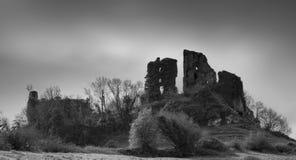 Carrigogunnell城堡2 图库摄影