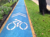 Carril de bicicleta en el parque fotografía de archivo