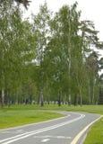 Carril de bicicleta en el parque Imagen de archivo libre de regalías